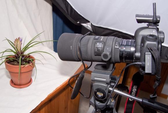 kameran