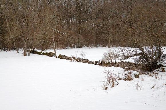 lundäng