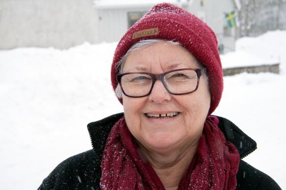 snöenkät_1