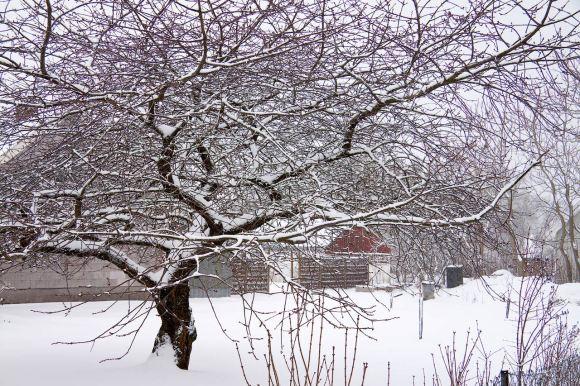 vinterigen_02