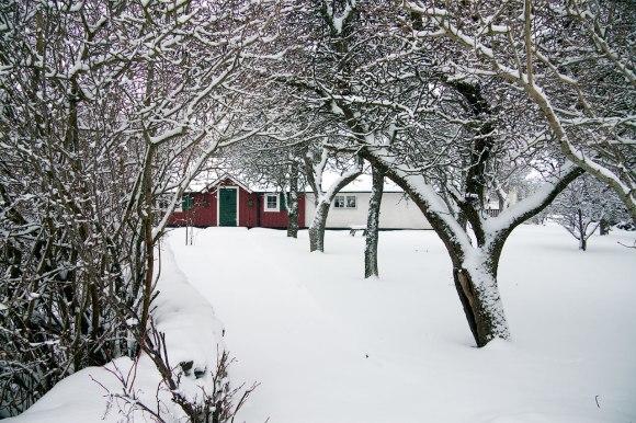 vinterigen_05