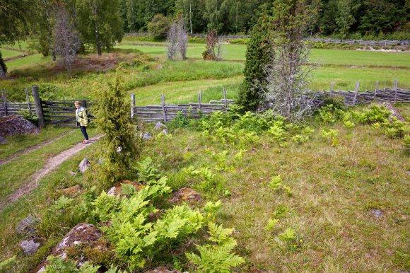stensjöby_24