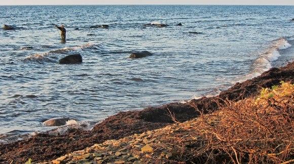 öringsfiske_07_detaljskärpt