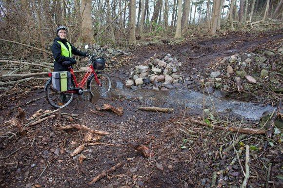 Cykelväg_Albrunnaskogen_28