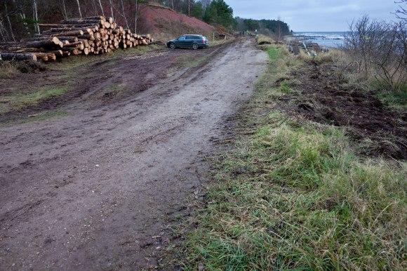 Cykelväg_Albrunnaskogen_7474