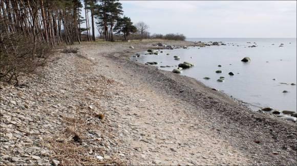 Dagens-Ölandsbild-114