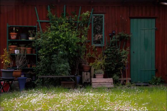 trädgård_05