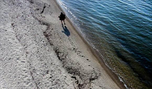 strandlöparen